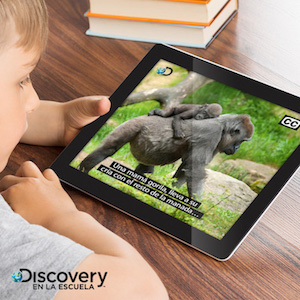 A boy watches a subtitled video on a tablet